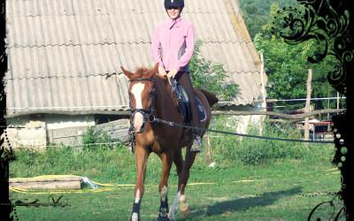 Őzi lovunk futószáras oktatás közben
